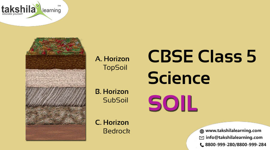 NCERT & CBSE Class 5 ScienceMaterials and Matter - Agents of erosion