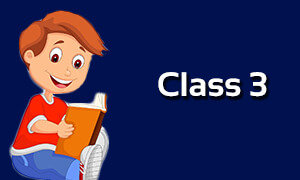 Online Classes For Class 3