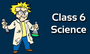Class 6 Science Online Classes | CBSE | ICSE | NCERT Solutions