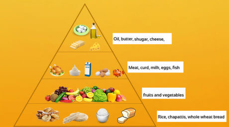 Class 5 Science Balanced Diet,Proteins,Nutrients & pyramid of food chart