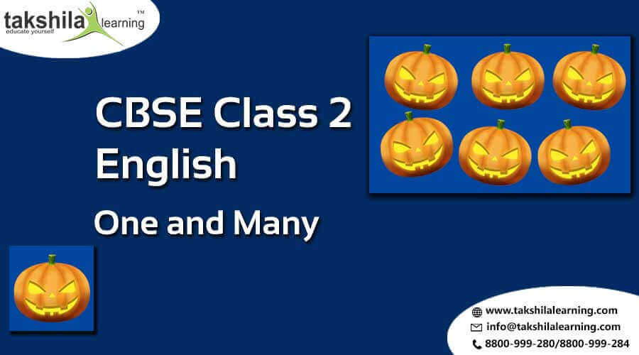 CBSE Class 2 English Worksheets Question Papers One and Many