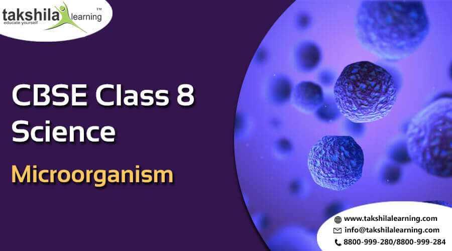 CBSe & NCERT Solutions for Class 8 Science Microorganism Chapter 2