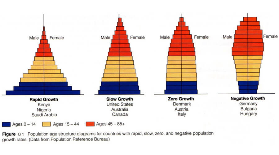 Population And Population Growth From Chapter 13 Class 12 Biology