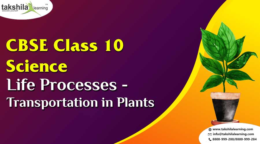 Class 10 Science - Chapter 1- Life processes