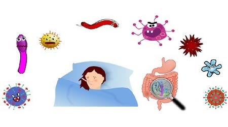 Role of Microbes in Our Life class 8 science