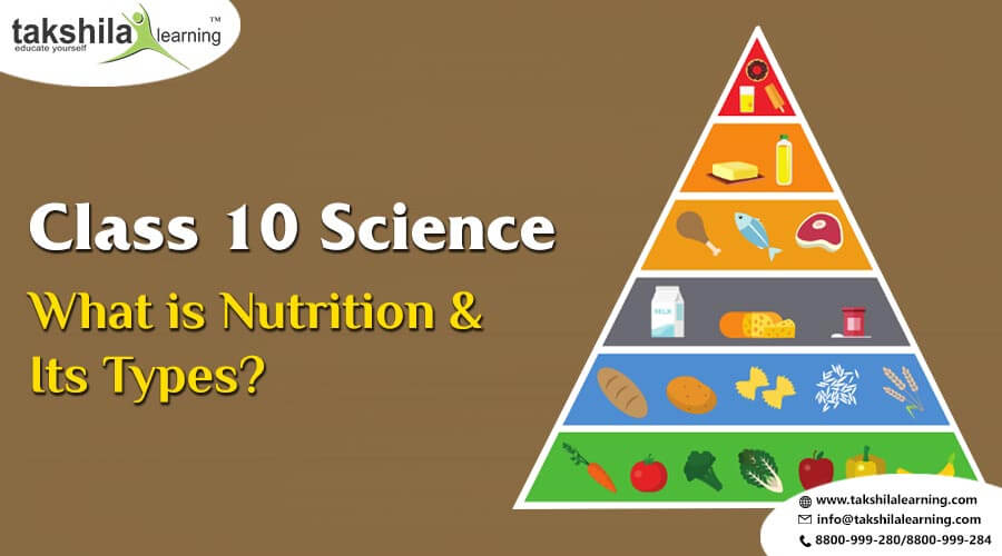 What is Nutrition class 10 science