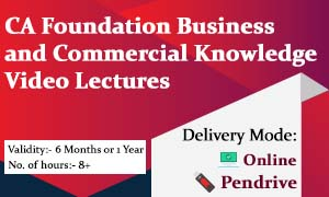 CA Foundation Business and Commercial Knowledge Video Lectures