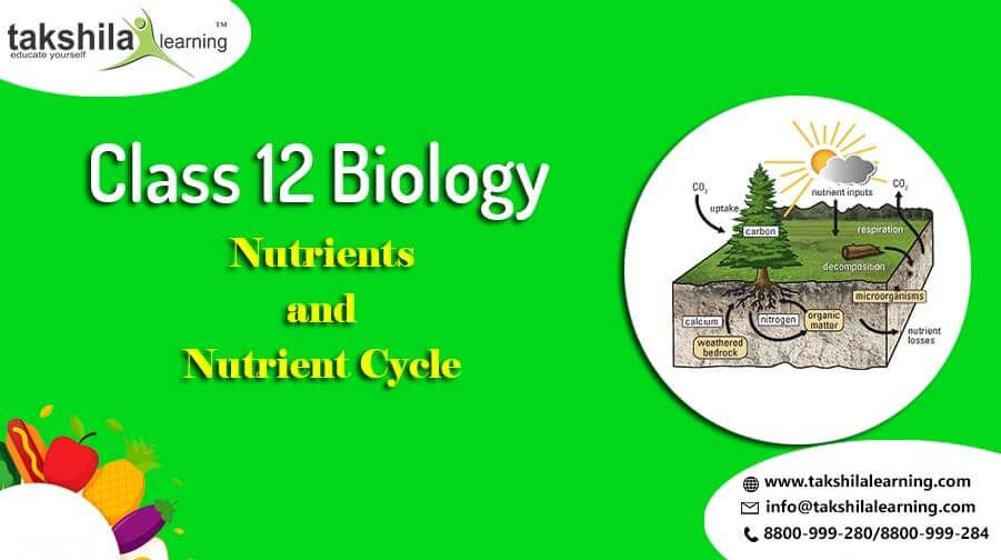 Nutrients and Nutrient Cycle class 12 biology