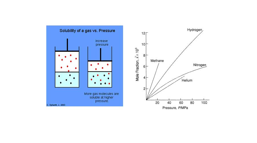 Solubility Of Gases In Liquids | Notes for NCERT Chemistry Class 12