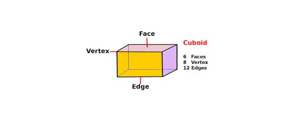 Surface Areas and Volumes – Cube, Cuboid and Cylinder, Class 10 Maths