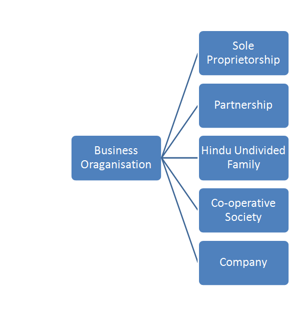 CS Foundation Detailed Explanation of Forms Of Business Organization