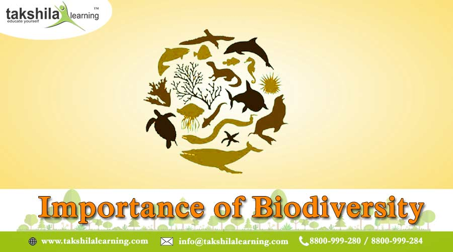 Biodiversity and its Importance   NCERT Biology Class 12