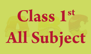 Class 1 Online Classes Computer, EVS, GK, Science, Hindi, English, Maths, Science