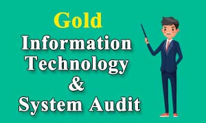 information-techology-system audit