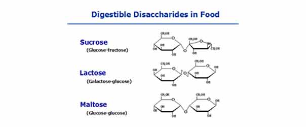 What are Carbohydrates and its Classification