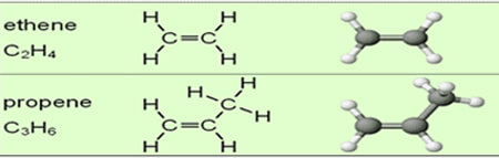 What are Hydrocarbons and its types? NCERT Chemistry Class 11