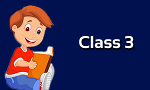 Class 3 - All Subjects Animated Classes {Recommended}