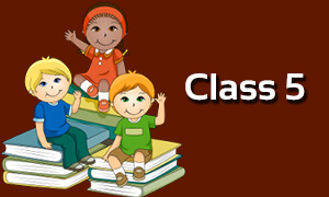 class 5 all subjects