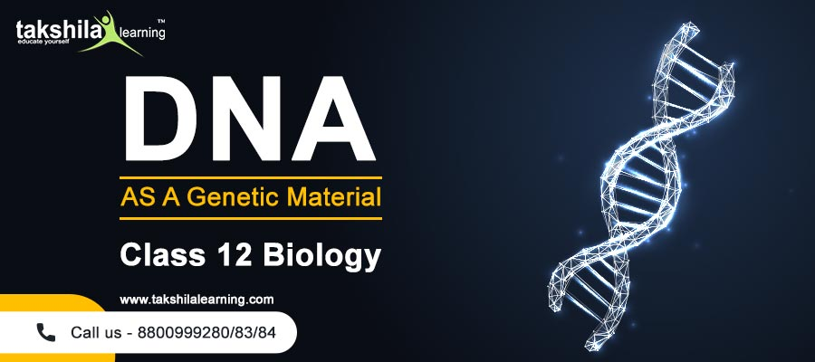 What is DNA (Deoxyribonucleic Acid) & Structure of DNA