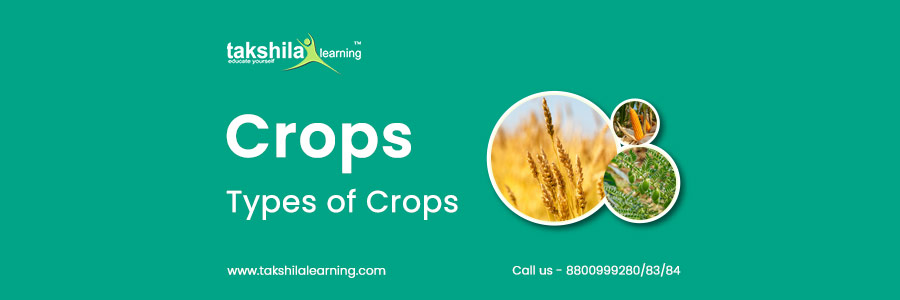 What are Crops and Types of Crops?