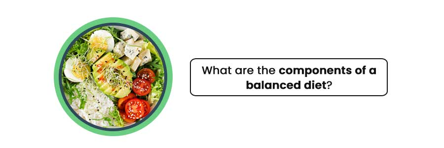 components of a balanced diet