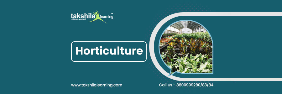 horticulture meaning